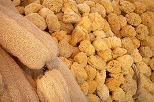 Beneficios y caracter sticas de la esponja vegetal - Esponja natural vegetal ...
